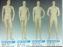男模特兒人台 (9)