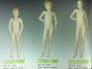兒童模特兒人台 (9)