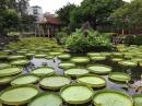 台北市景點、中正紀念堂、雙溪公園、總統府_180106_0020