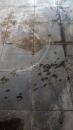 地板磁磚清潔(前)