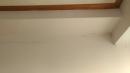 板橋民生路,牆面裂縫修補,全室油漆粉刷 (15)