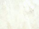 Winton帝寶系列V 塑膠地磚 塑膠地板  2060