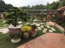 花園景觀園藝