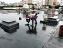 國臣屋頂防水
