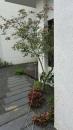 庭園造景,景觀設計,綠化工程規劃設計施工_8