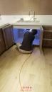 高雄廚房除白蟻