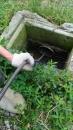 整排住家共用排水管阻塞
