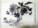 方攸敏 (花卉),雨中牡丹,水墨畫作品