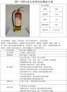 環保滅火器236藥劑-10P