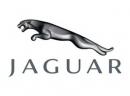 Jaguar 捷豹