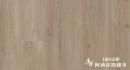 1601439 阿迪達斯橡木