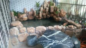 屋頂花園池