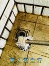 頂樓排水管疏通
