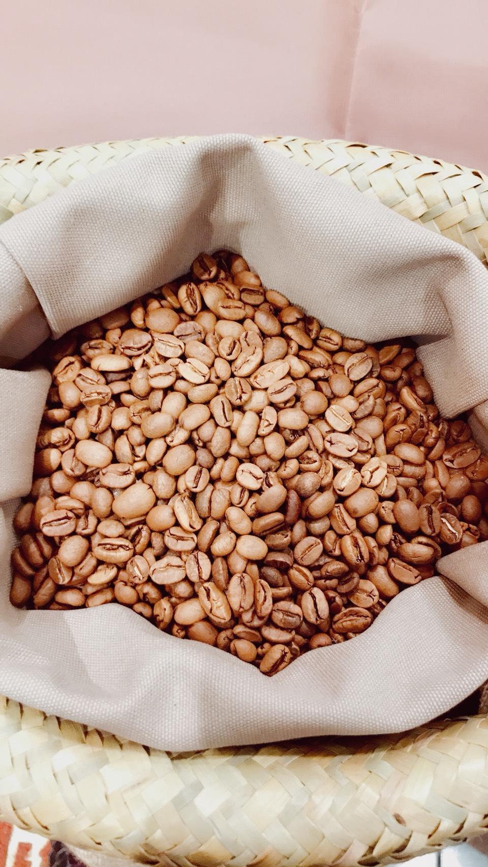 台灣阿里山-阿拉比卡咖啡豆