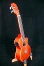 (熱賣補貨中) 珍珠菊木23吋(電)烏克麗麗 CL8250IMA-OE古典頭