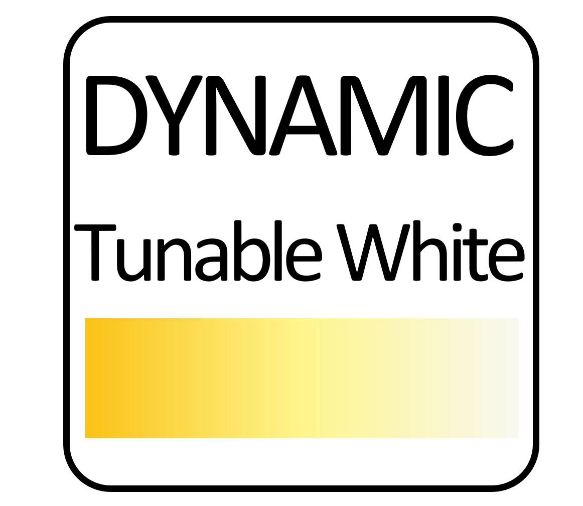 icon#tunable.jpg