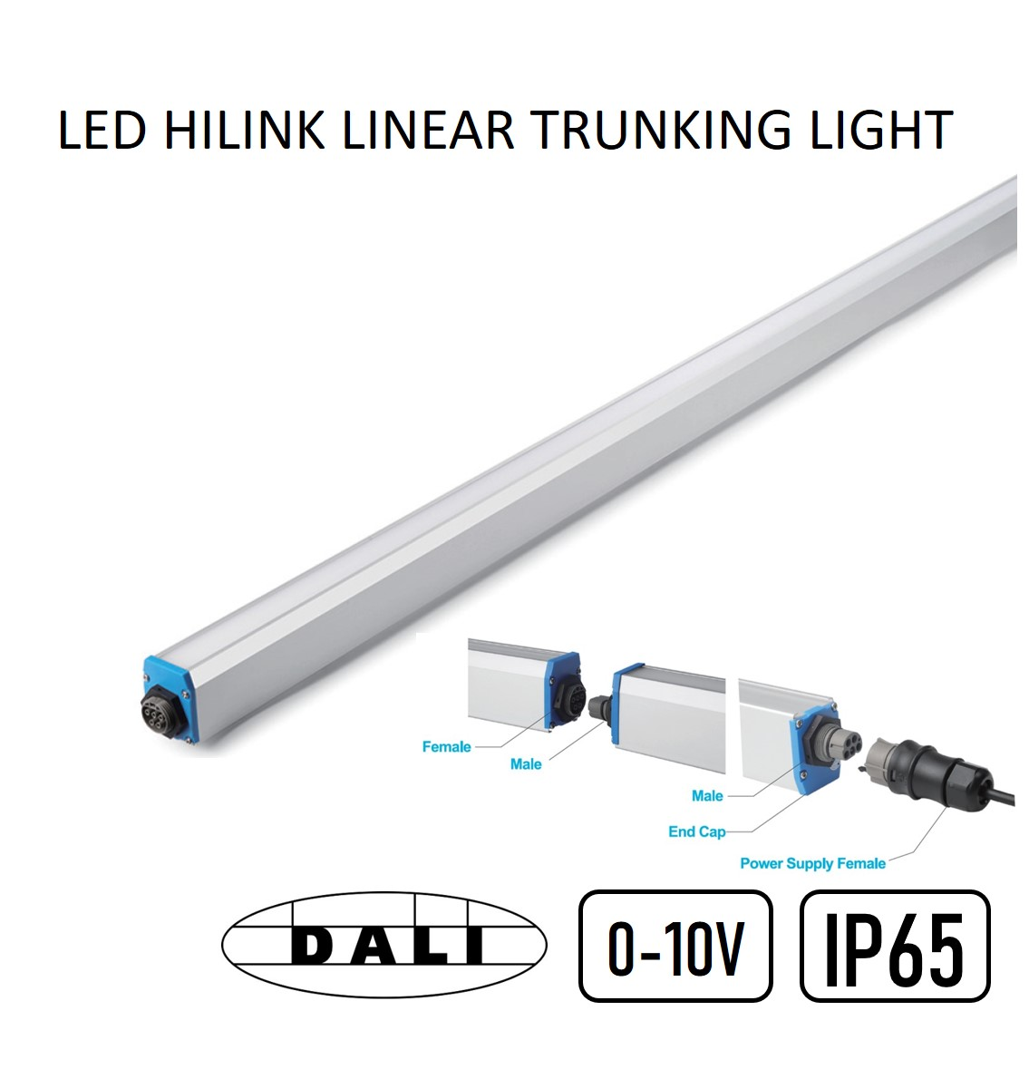 Trunking Light