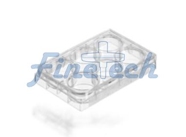 培養板6孔平底FT511-9.jpg