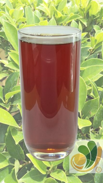 (50x)藍莓果茶