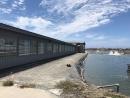 路竹石斑魚苗養殖場採購13KVA柴油發電機組