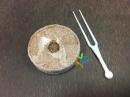 草莓移植育苗椰盤+固定叉-10入