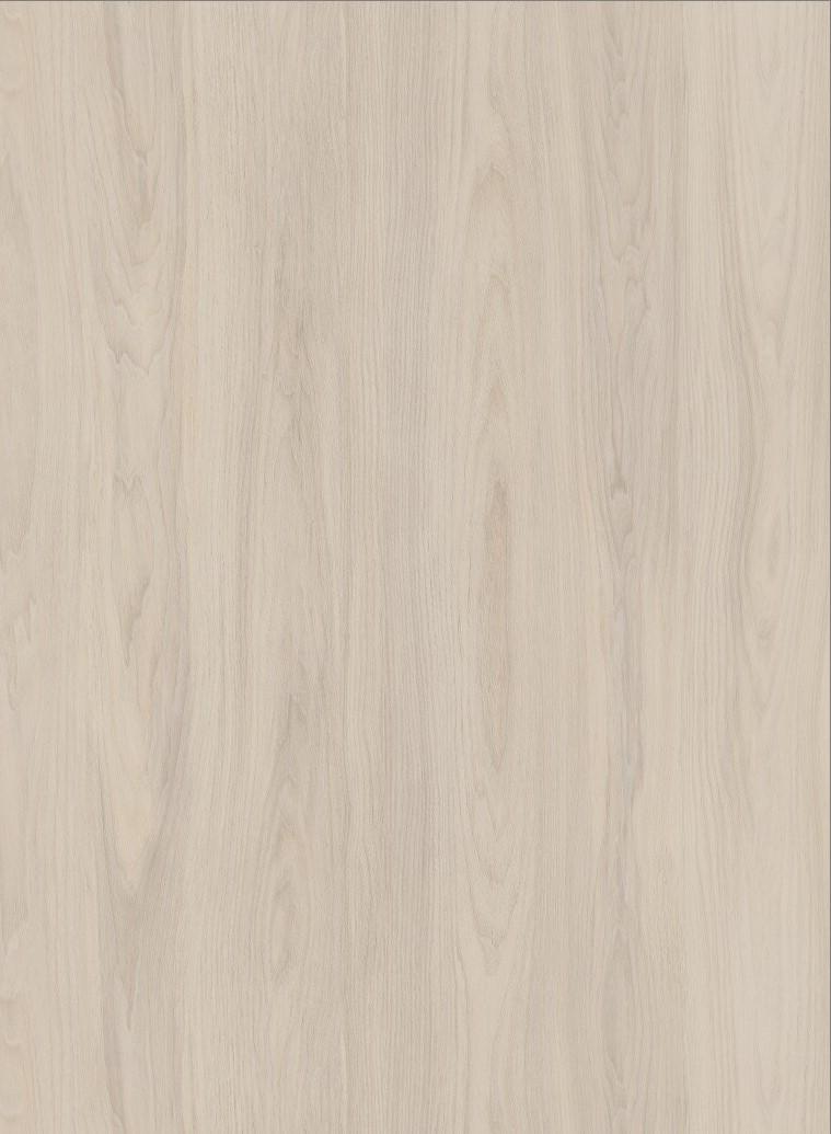 H3760-白榆木
