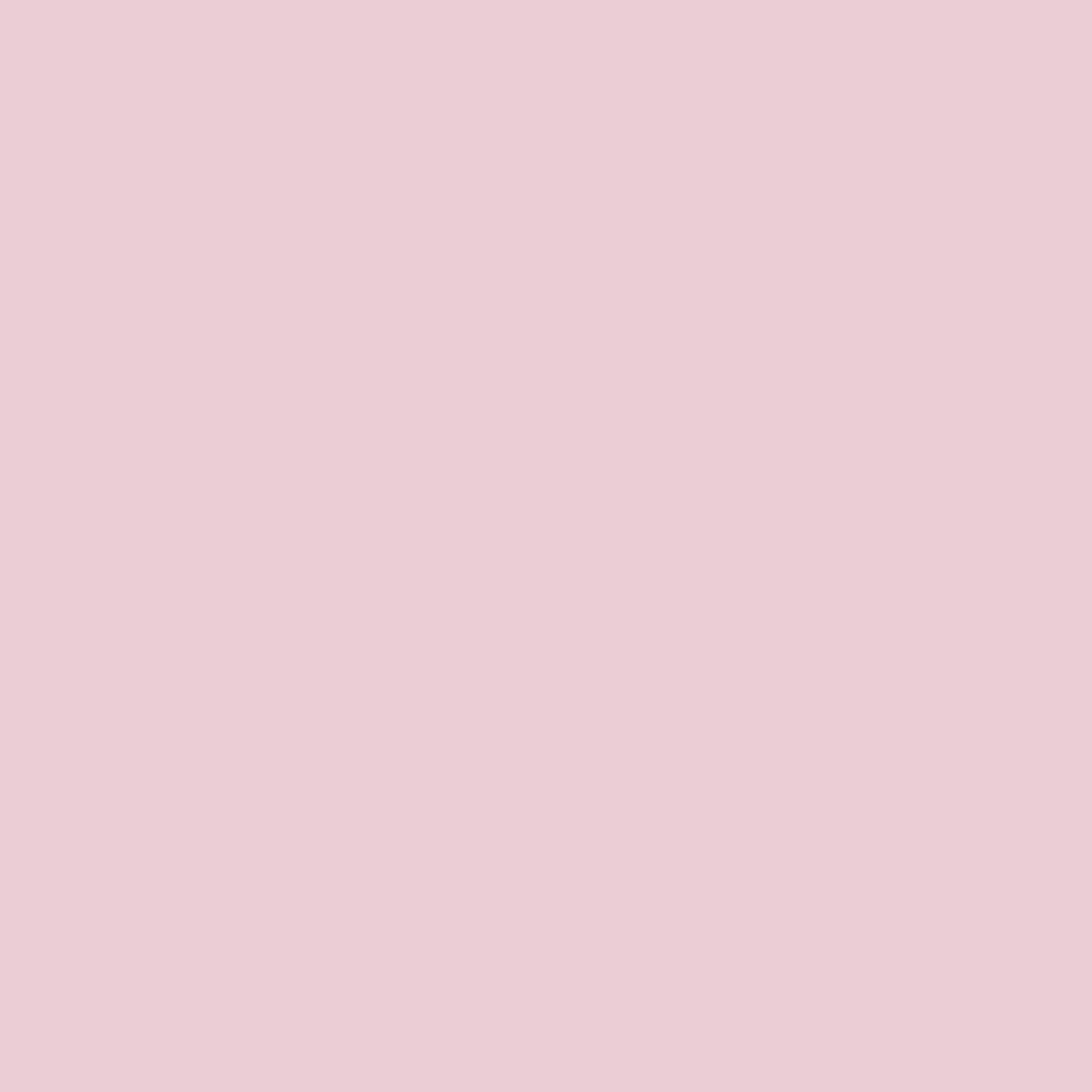 1655M-薔薇粉