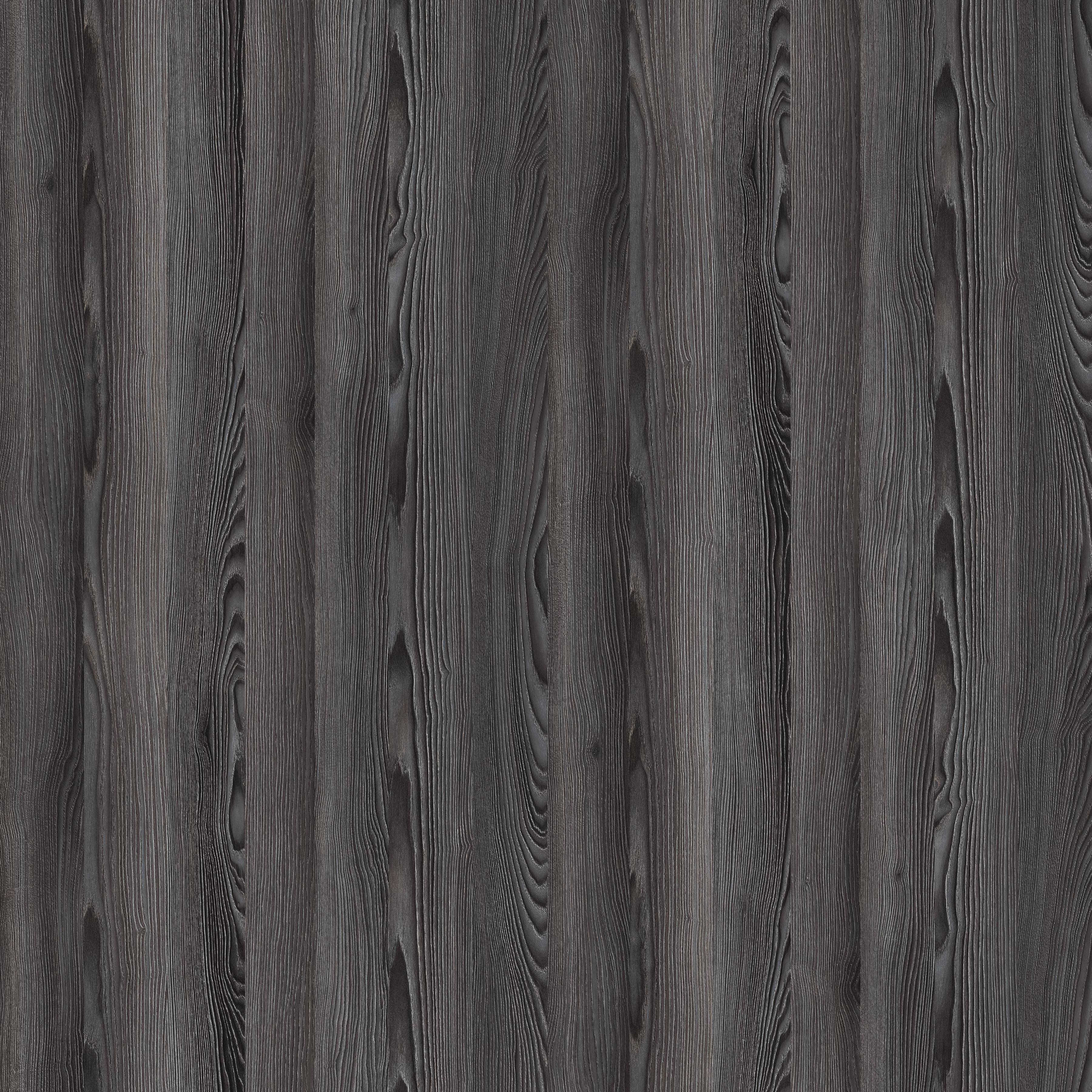 55059R-黑騎士