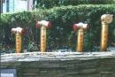公設標示-消防出水孔