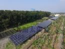屏東地區 《農地型》設置太陽光電