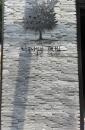 MAPLE TREE-黑鐵浮腳字