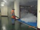 環境消毒(除蚊子跳蚤)