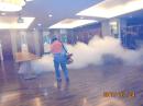 消滅蟑螂-藥劑噴灑施作