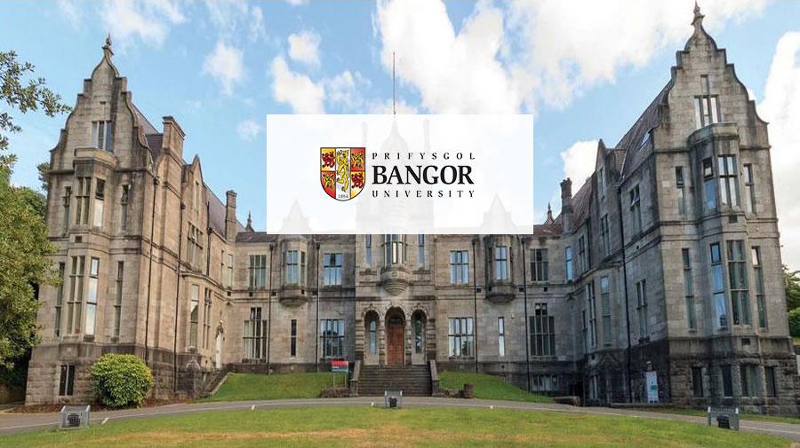班格爾大學