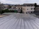 屋頂翻修 (6)