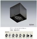 AR吸頂式盒燈/1燈