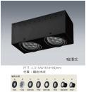 AR吸頂式盒燈/2燈