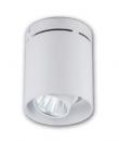 LED COB 30W 桶燈