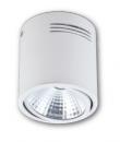 LED COB 10W 桶燈