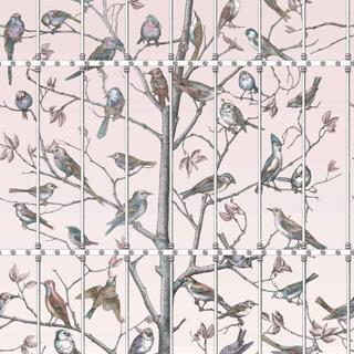 114-11022_Uccelli