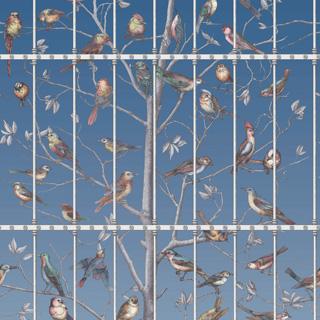114-11023_Uccelli