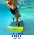 水中跑步機-A2000