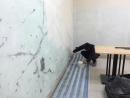 垂楊路-3F後房間整間油漆4