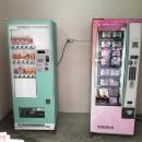 逢甲-乾燥花及飲料販賣機