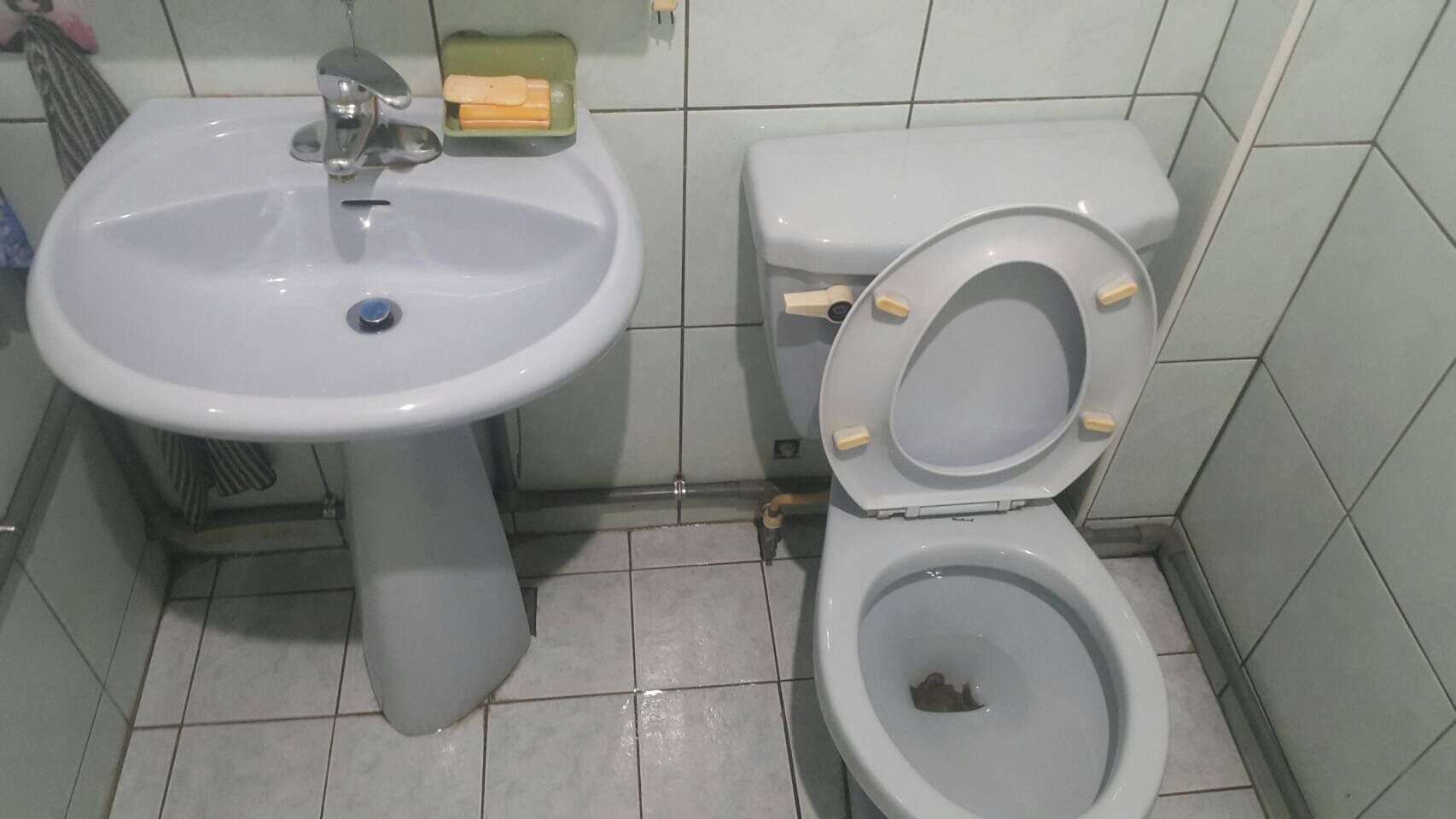 台中住家衛浴廁所清潔
