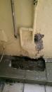 鳳仁路-出水管漏水處理