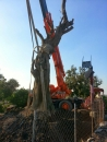 園藝樹木吊掛 (4)