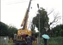 彰化吊車 (2)