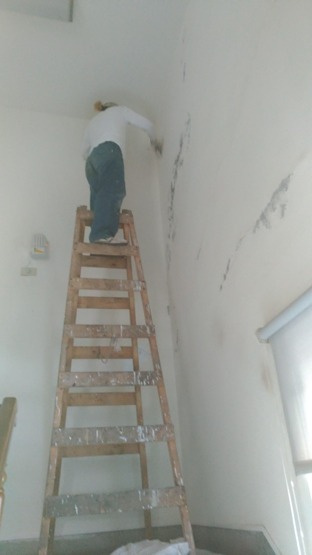 新北市住家牆面壁癌處處理油漆粉刷 (25)