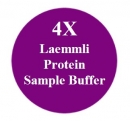 EL 4X Laemmli Protein Sample Solution